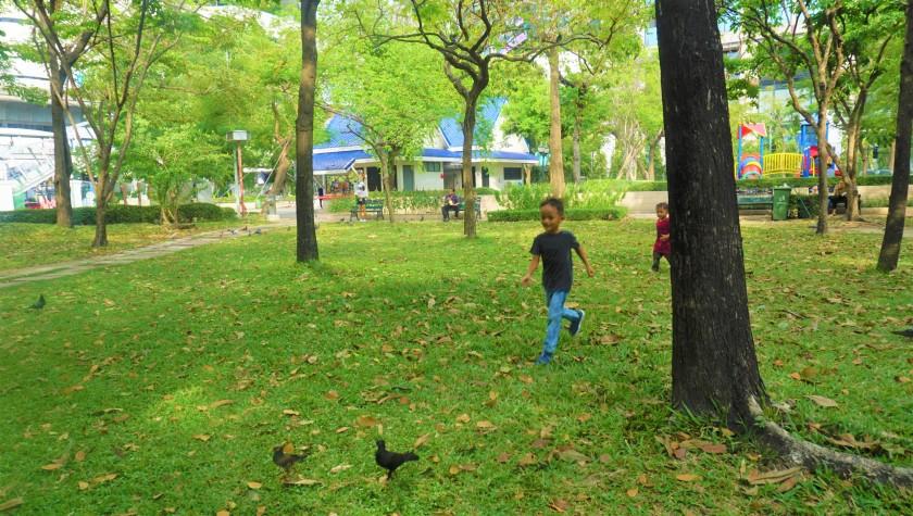 lumpini park2.jpg